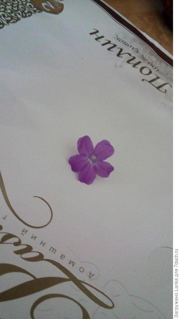 Вот такой был на нем цветочек