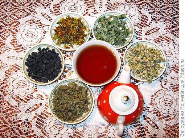 Чайные травы