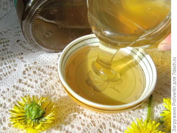 мёд из одуванчиков