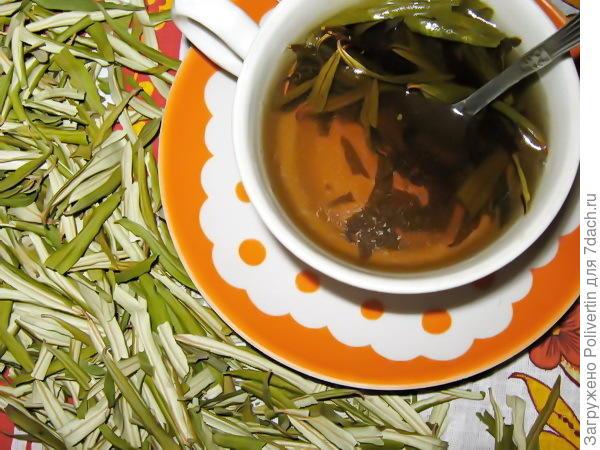 чай из облепиховых листьев