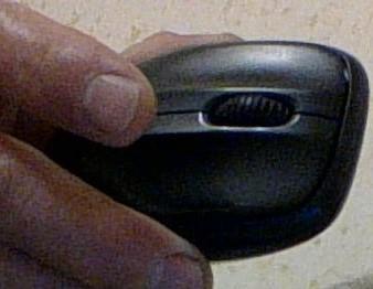 мышь мутант