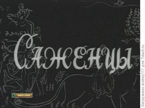 Режиссер Резо Чхеидзе.   Грузия фильм.