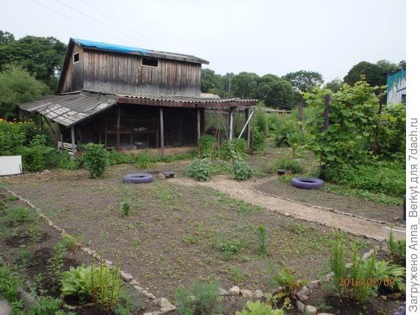 6. приходилось много и часто очищать от травы