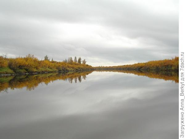 Осенняя гладь (Пантелеиха, приток Колымы)