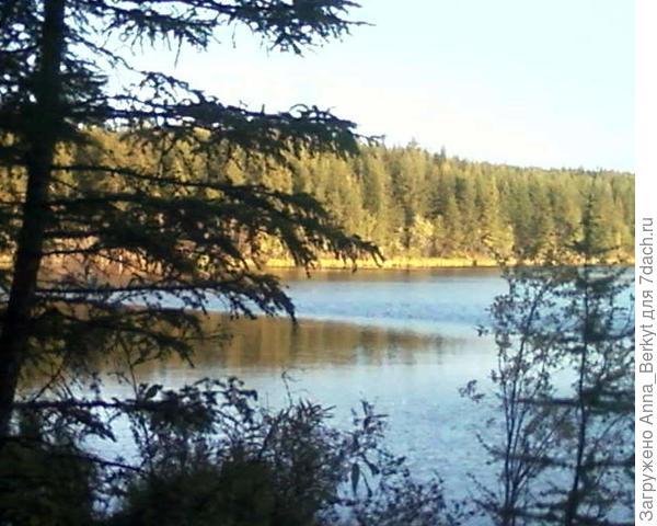 На озере (Крайний север, август)