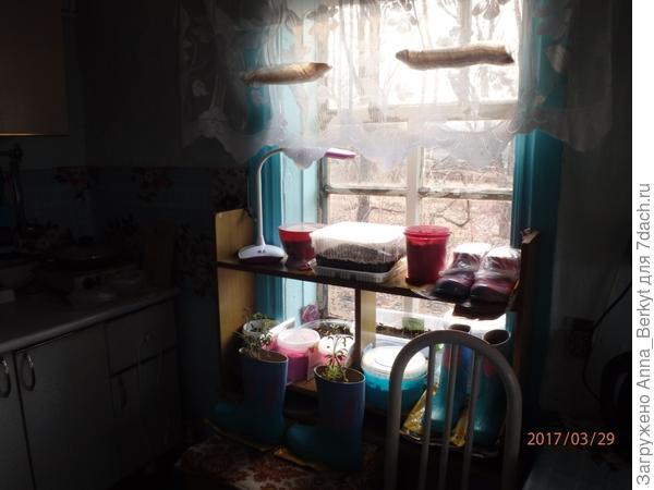 так выглядело первое окно на кухне