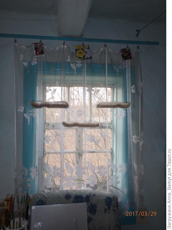 и четвёртое окно на кухне