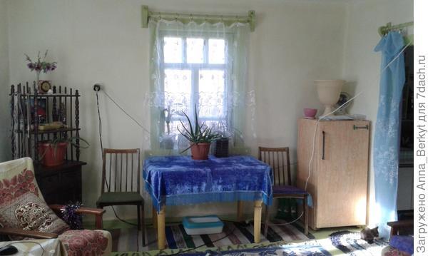 другая часть зала (западное окно)... вместо комода, холодильник