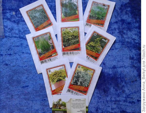 остатки семян хвойников, не вошедшие в первую посылку