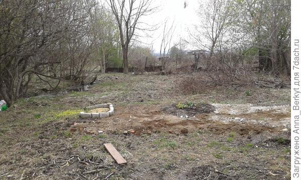 в начале мая территория за забором возле ручья выглядела так