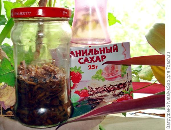 Масляная настойка гвоздики и одуванчика, ванильный сахар