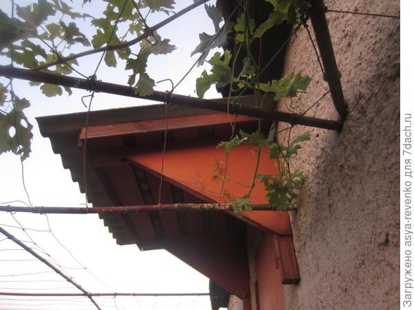 козырек и еще трубы под виноград