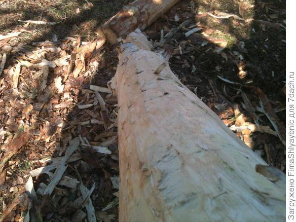 Столбик очищенный от коры