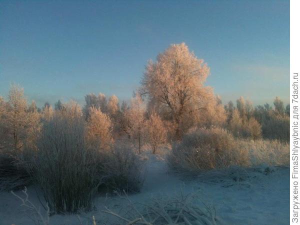 Зимнее Вярьмово