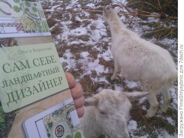 """Книга """"Сам себе ландшафтный дизайнер"""" на фоне коз"""