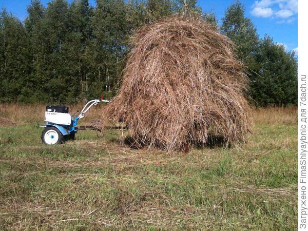 На тележке почти 300 кГ сена