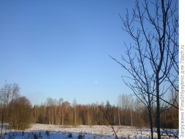 Синее деревенское небо