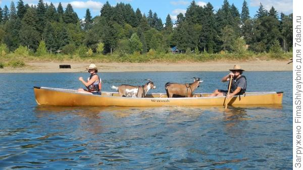 Вниз по реке.  Фото с сайта grindtv.com