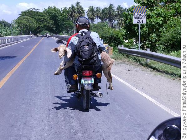 В дальнюю дорогу. Фото с сайта staticflickr.com