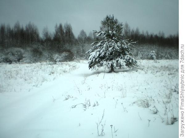 Февраль - снег и морозы