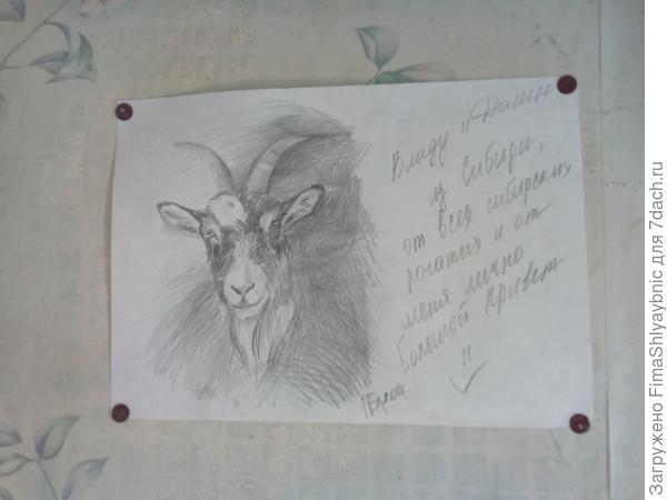 На рисунке строгая Даша