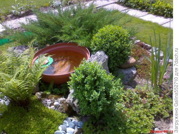 Это маленький кусочек одной из композиций моего сада