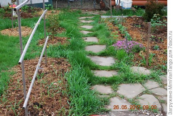 Тропинки,не только к курятнику,но и компосту,а также в огороде.