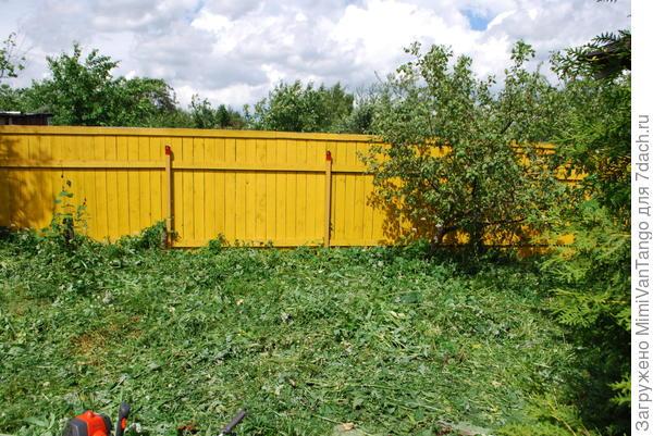 Снова появились деревья и забор.