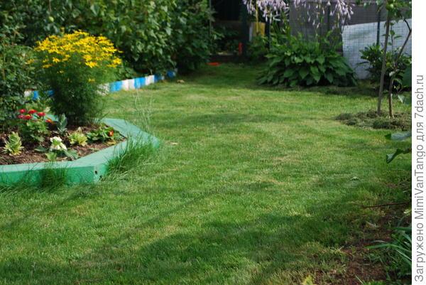 Проходим лужайку газонокосилкой.