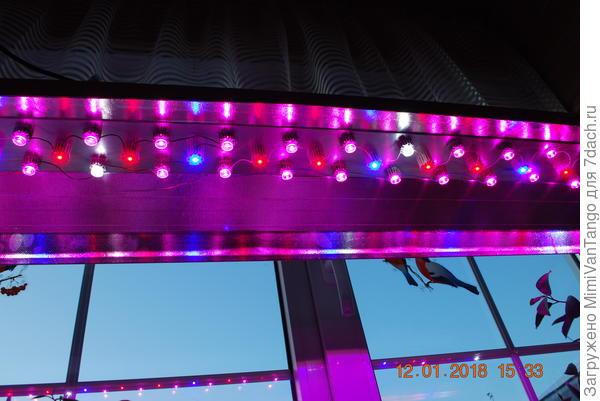Лампы собираю сам,спектр стараюсь подобрать более широкий.