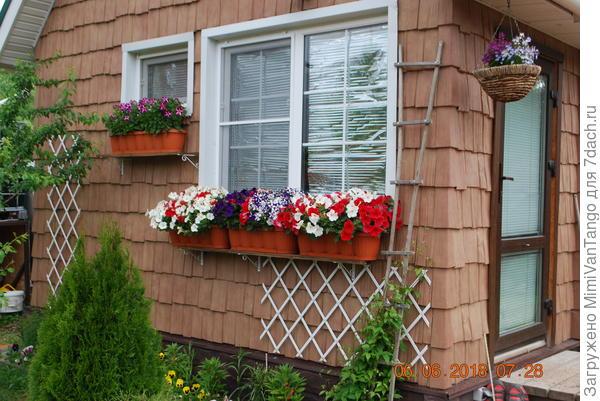Контейнеры с растениями разместил на западном фасаде дома.