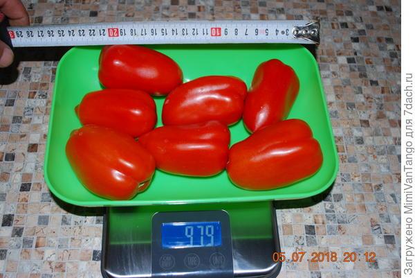Общий вес с куста №4
