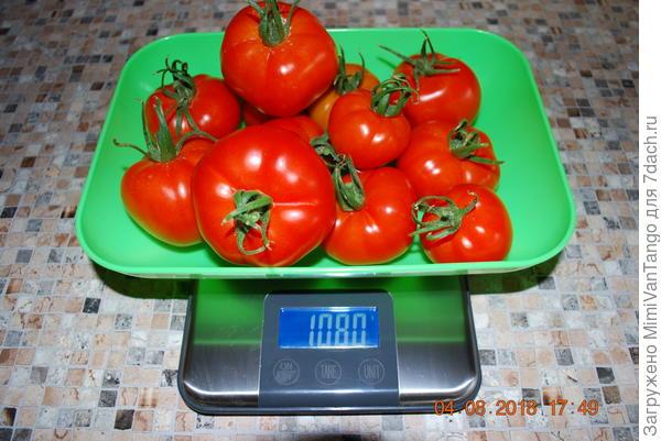 Общий вес сбора1080 г.