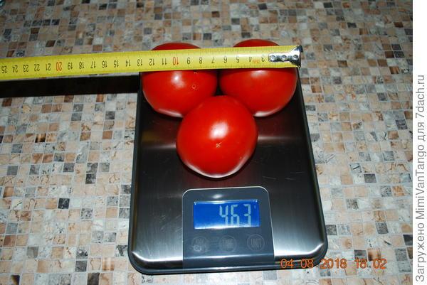 Средний вес и размер плода.