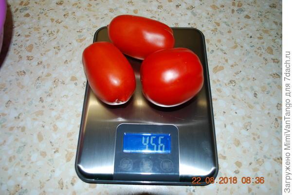 Плоды конечно уже мельчают,но пока ещё достаточно крупные.