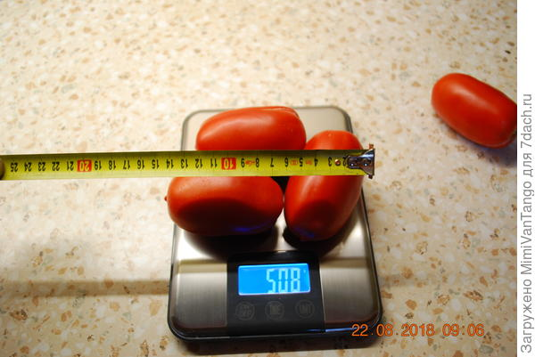 Вес и размер плодов.