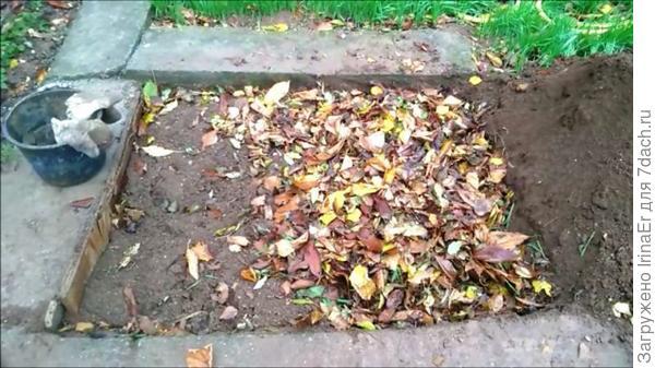 Листья осенью в траншею