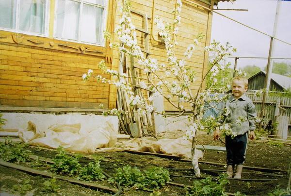 Цветет четырехлетняя карликовая яблоня. «Для масштаба» рядом стоит мой пятилетноий сосед Азатик