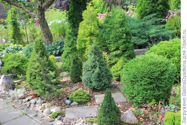 Садовый измельчитель и вид сада ,в котором в он помогает !!!