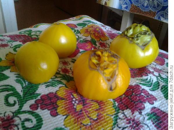 -Такое впечатление, что это,- гибрид с ананасом!