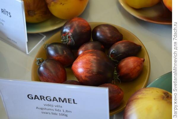 Гаргамель