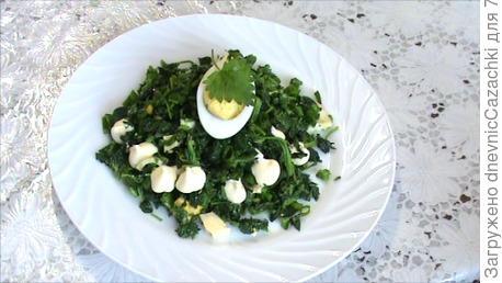 салат с яйцом, сыром, зеленым  луком. Основной  ингридиент - крапива