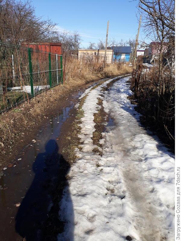 Вот она, дорога, через 10 метров, справа, будет мой участок.