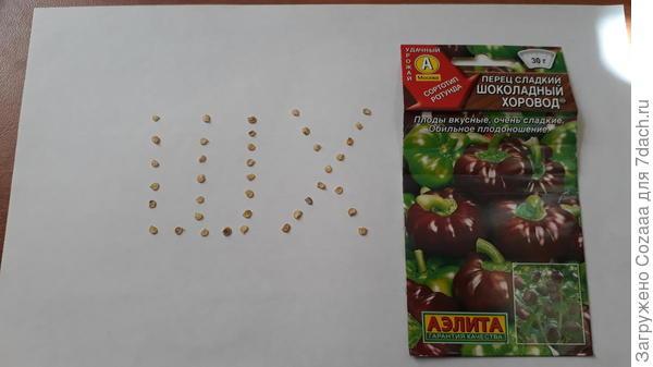 Семена сладкого перца Шоколадный хоровод.