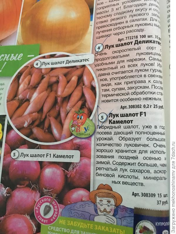"""В """"Русском огороде""""можно заказать"""