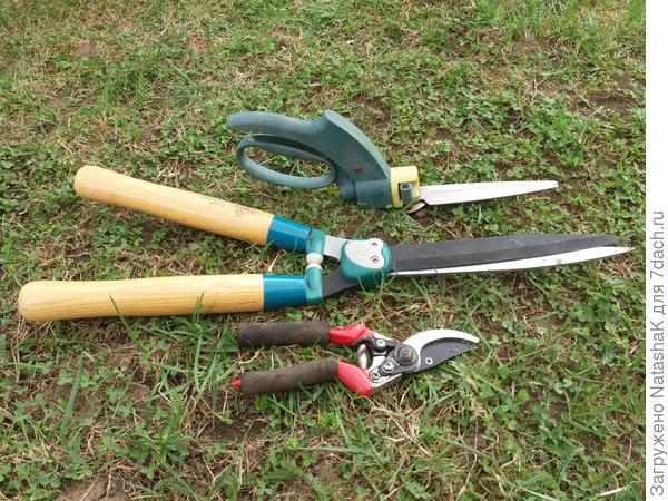 Кусторез, ножницы для травы и секатор