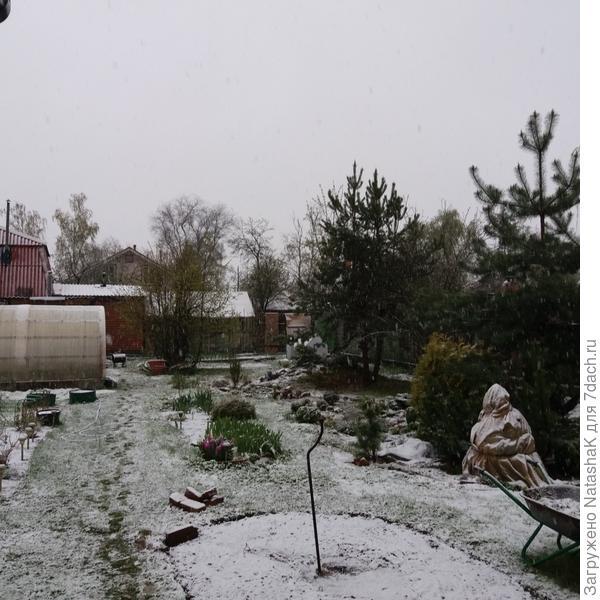 """""""Первый снег"""" - не забудь-те насладиться, а то дальше будут только дожди ..."""