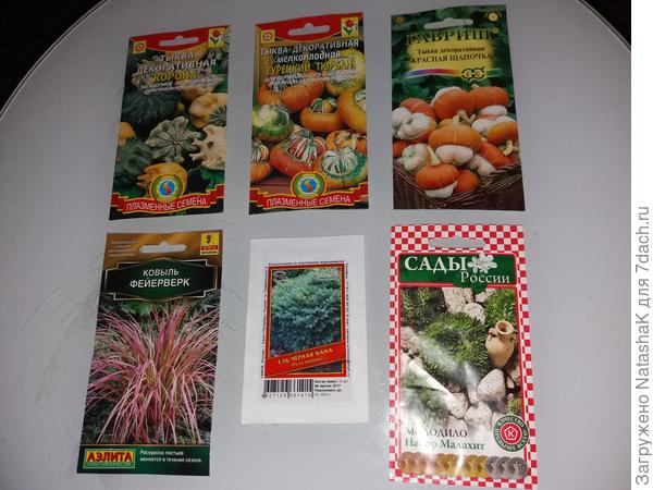 Экспериментально-декоративные семена