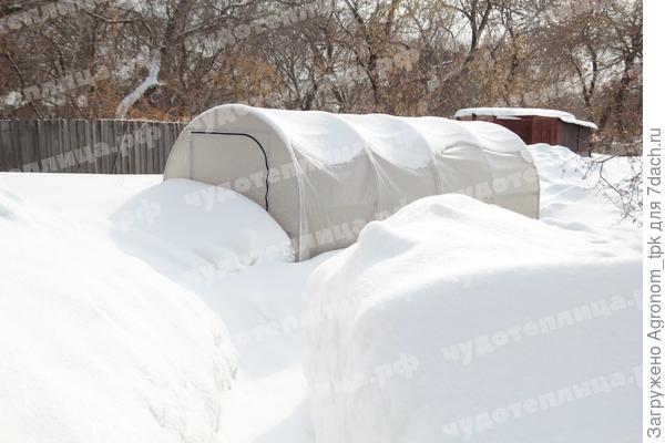 Зимний тест Чудотеплицы Сибирский Агроном