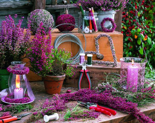 Из веточек эрики и вереска можно сделать милый венок или сплести гирлянду. Для этого вам понадобится каркас из проволоки, тонкая нитка для фиксации и секатор. Дверь украшают два горшка с обильно цветущей эрикой изящной (Erica gracilis) BEAUTY QUEENS. Они прикреплены к старой вешалке для полотенец фиолетовой бечевкой в тон цветам. Парочку органично дополняют венок из вереска и веточка красивоплодника.
